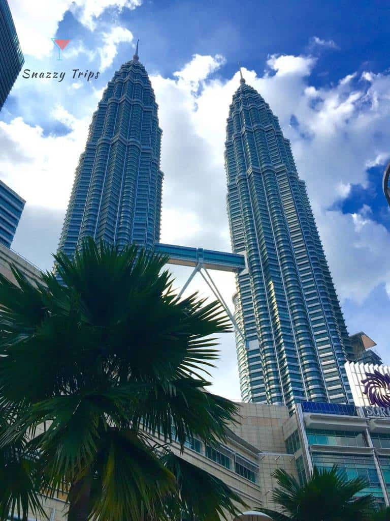 Tall metal towers and palm tree
