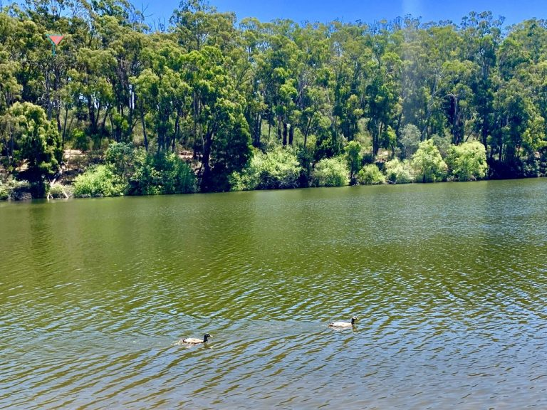 A Quick Guide to Daylesford