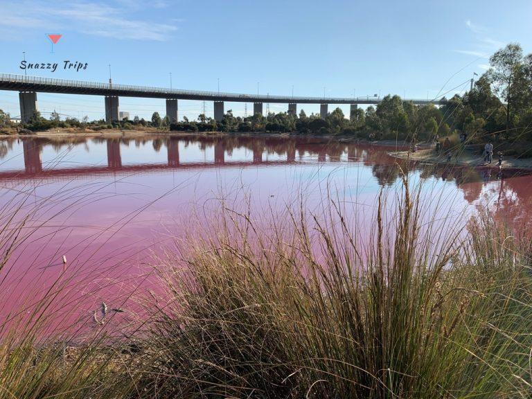 Marvel at Melbourne's Pink Lake
