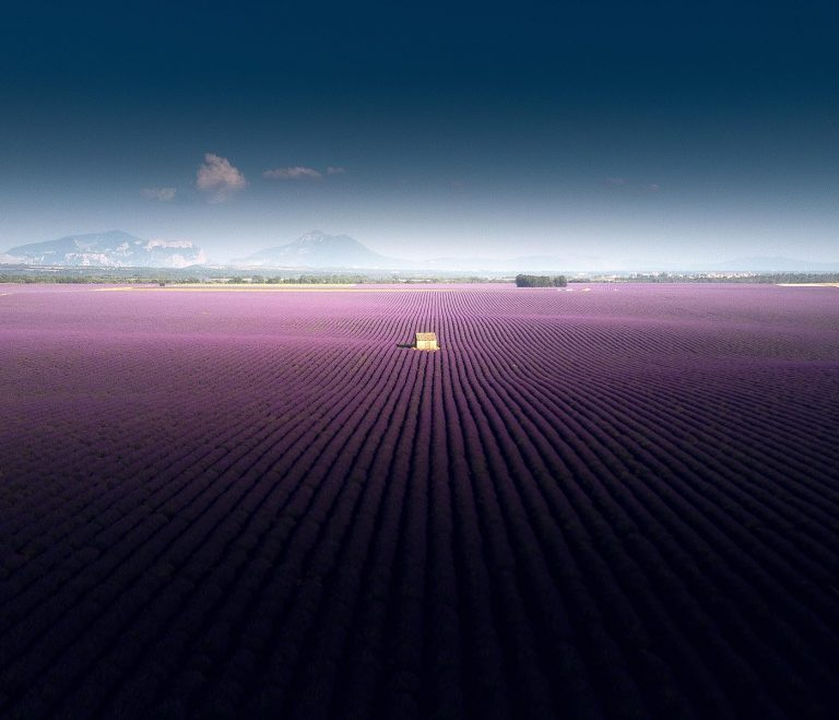 1397px Lavender fields of Valensole 2019 Snazzy Trips travel blog