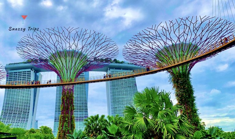 Incredible Facts About Singapore
