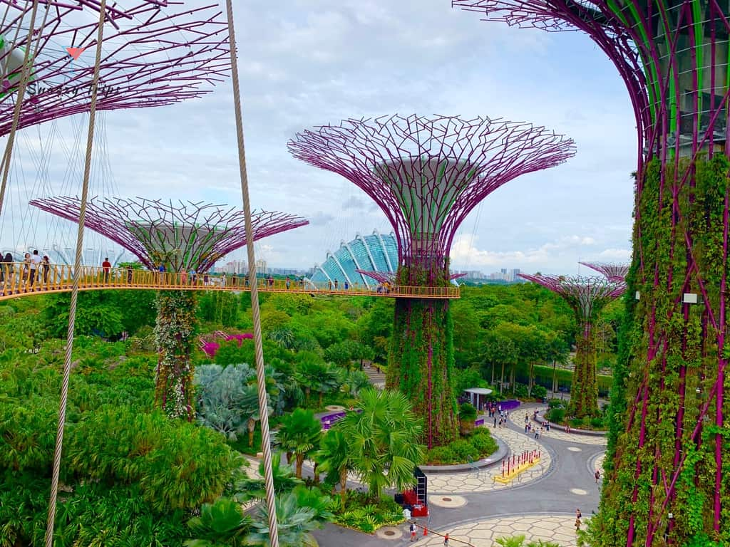 Supertrees and gardens