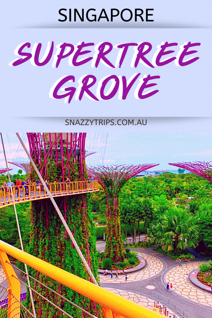 Supertree grove Singapore 1 Snazzy Trips travel blog