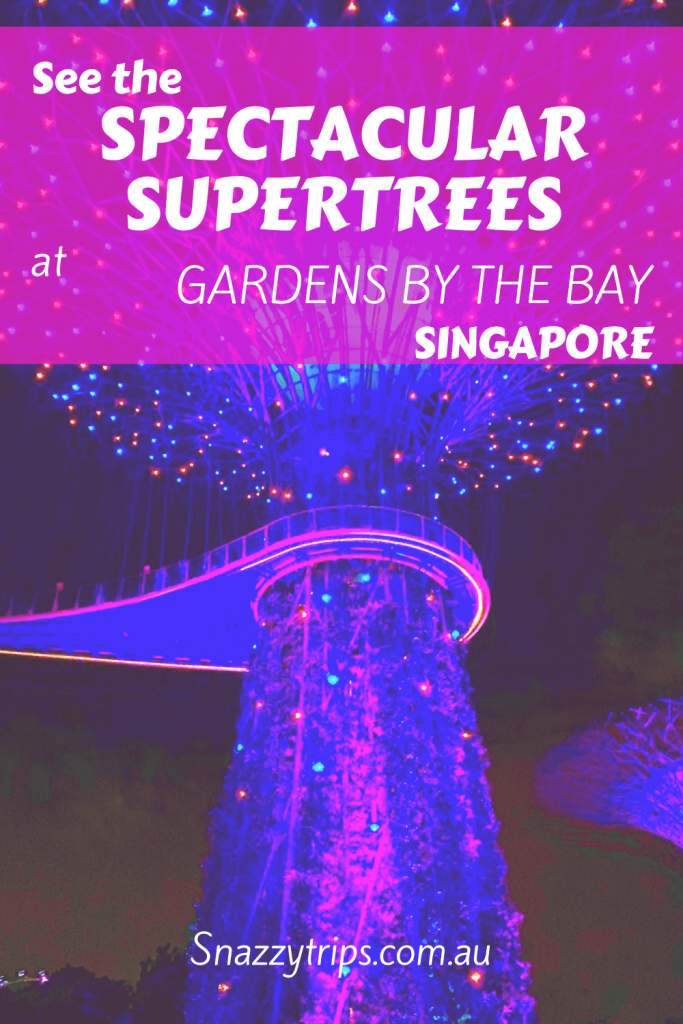 Supertrees of Singapore 2 1 1 Snazzy Trips travel blog